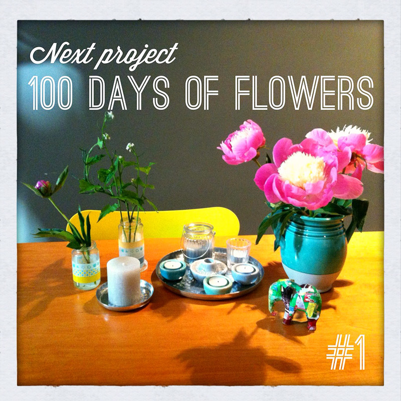 100 days of flowers persoonlijk iphone fotografie project instagram