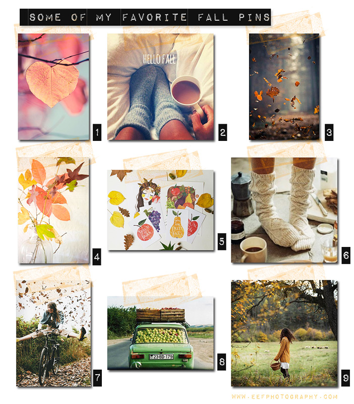 www.eefphotography.com | blog #herfst favoriten #pinterest
