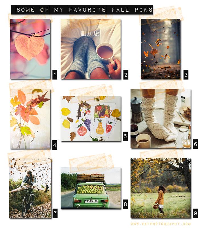 www.eefphotography.com | blog #herfst favoriten #pinterest