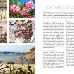 caribisch kookboek, Caribische kookboeken
